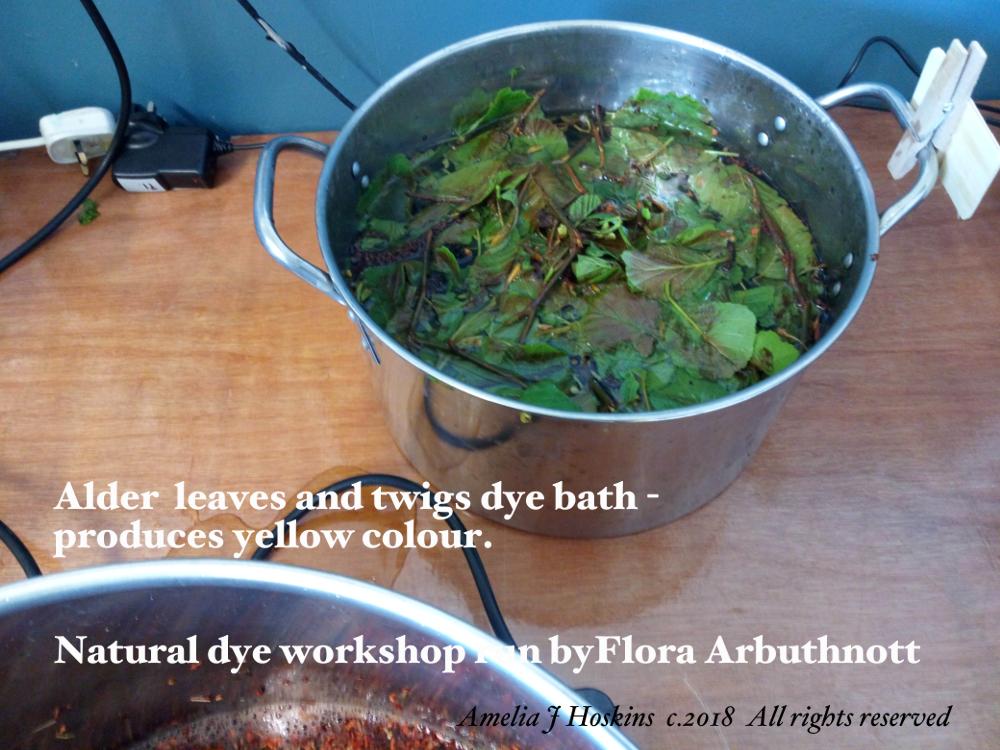 Alder dye bath 2018-04-28