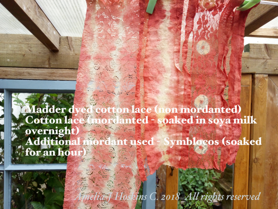 Madder dye on lace fabrics 2018-05