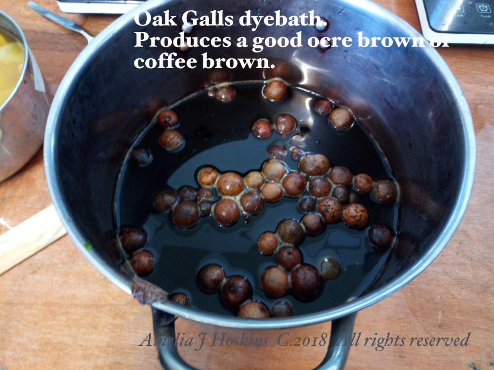 Oak galls dyebath 2018-04-28
