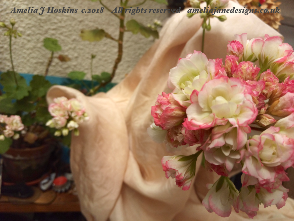 Avocado dyed habotai silk, pink-white geraniums 2018-06-22 - 002 edited annotated